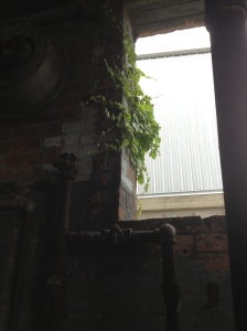 New life overtaking the old boiler room at Mass Moca
